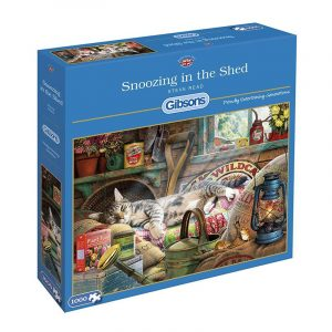 G6248_Snoozing_in_the_Shed_box_1000x