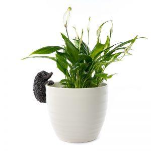 Jardinopia-Pot-Buddy-Hedgehog