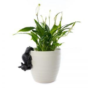 Jardinopia-Pot-Buddy-Red-Squirrel