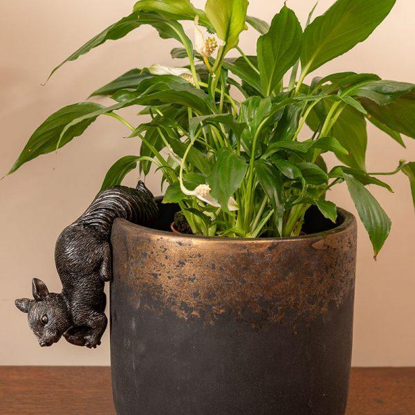 Jardinopia-Pot-Buddy-Red-Squirrel-indoors