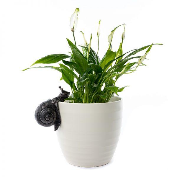 Jardinopia-Pot-Buddy-Snail-ON-POT---PB0008