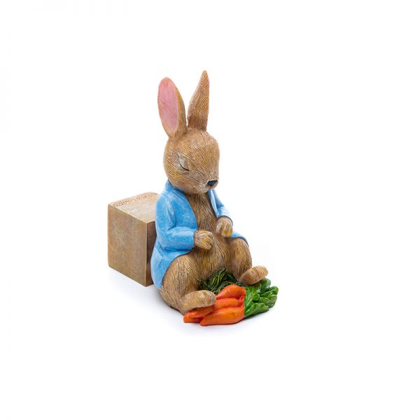 Jardinopia-potty-feet-peter-rabbit-sleeping