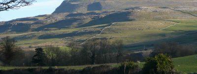 ingle view 3 landscape